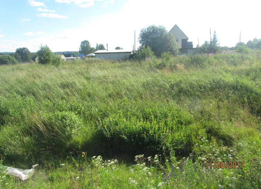 View img 3038